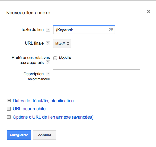 Illustration 1 Balise Google Adwords {KeyWord:} dans vos Sitelinks en Ecommerce