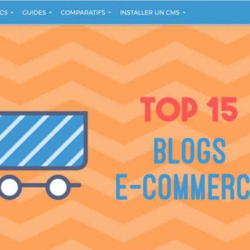Illustration 1 Stephanealligne.com dans le Top 15 des blogs Ecommerce par Codeur.com