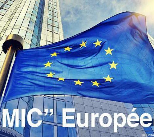 Illustration 1 [PRATIQUE] Liste des salaires minimum intermédiaires de croissance en Europe (SMIC)